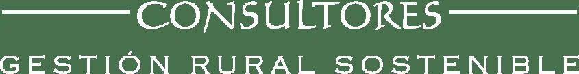 Vivencial consultores